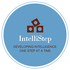 partners-logo-instellistep