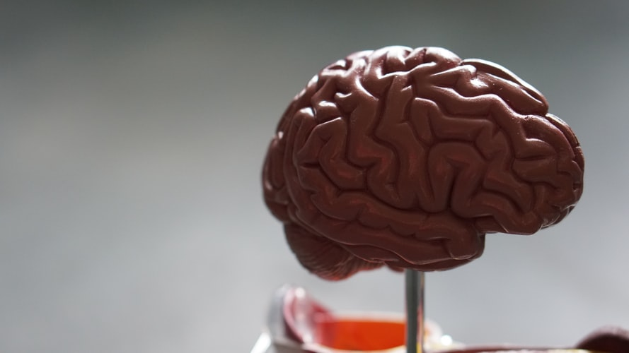 right left brain trauma